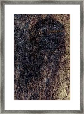 Hairy Window 1 Framed Print by Yevgeni Kacnelson