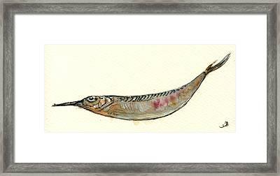 Halfbeak Fish Framed Print by Juan  Bosco