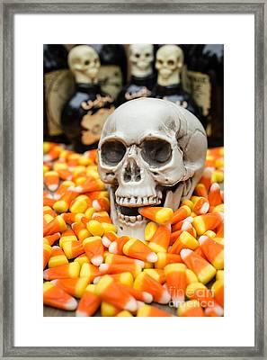 Halloween Candy Corn Framed Print by Edward Fielding