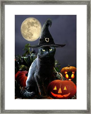 Witchy Black Halloween Cat Framed Print by Regina Femrite