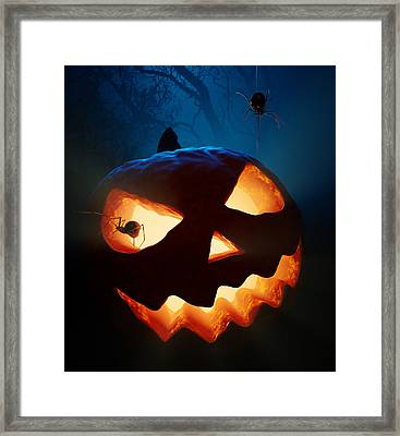 Halloween Pumpkin And Spiders Framed Print by Johan Swanepoel