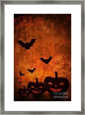 Halloween Pumpkins Framed Print by Jelena Jovanovic