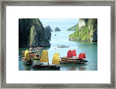 Halong Bay Sails 01 Framed Print by Rick Piper Photography