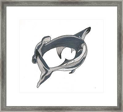 Hammer Head Shark Framed Print by Cherie Sexsmith