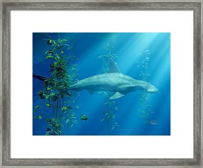 Hammerhead Among The Seaweed Framed Print by Daniel Eskridge