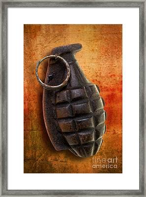 Hand Grenade Framed Print by Edward Fielding