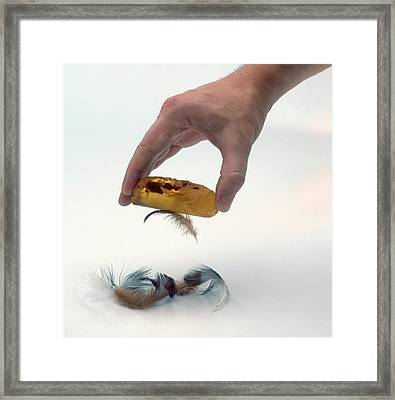 Hand Picking Up Feathers Framed Print by Dorling Kindersley/uig