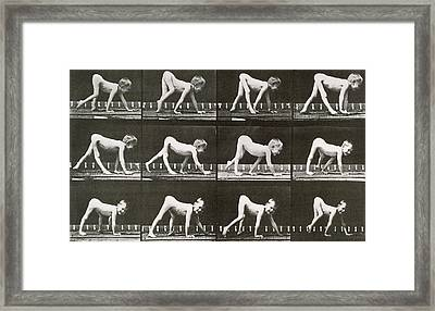 Handicapped Boy Crawling Framed Print by Eadweard Muybridge