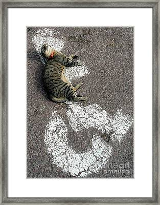 Handicat Parking Framed Print by Barbie Corbett-Newmin
