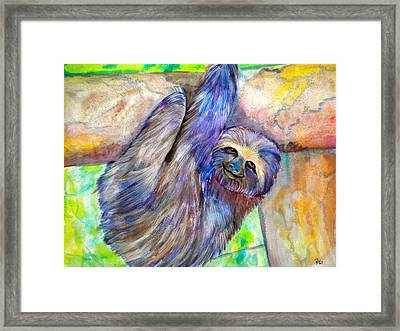 Hang In There Framed Print by Debi Starr