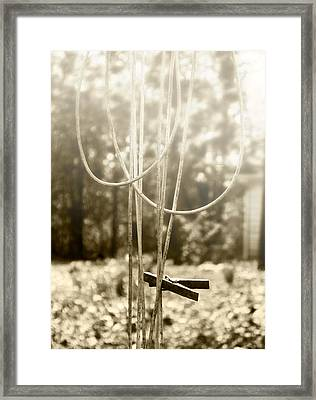 Hang It Up Framed Print by Kristie  Bonnewell