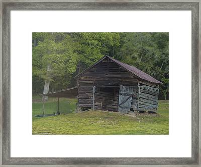 Hangin In There Framed Print by Robert J Andler