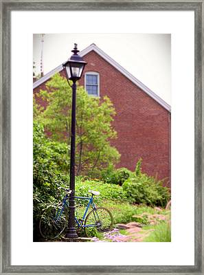 Hanging Around Framed Print by K Hines