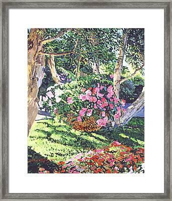 Hanging Flower Basket Framed Print by David Lloyd Glover