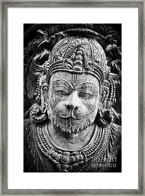 Hanuman Monochrome Framed Print by Tim Gainey