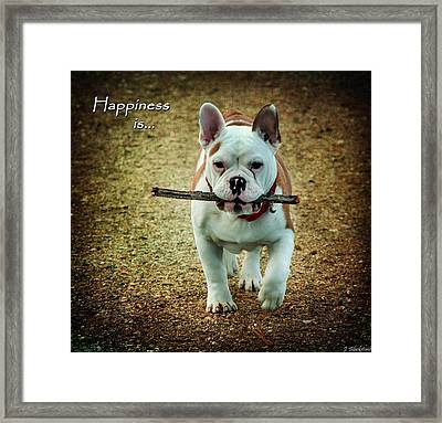 Happiness Is Framed Print by Jordan Blackstone