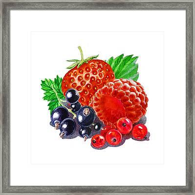 Happy Berry Mix Framed Print by Irina Sztukowski