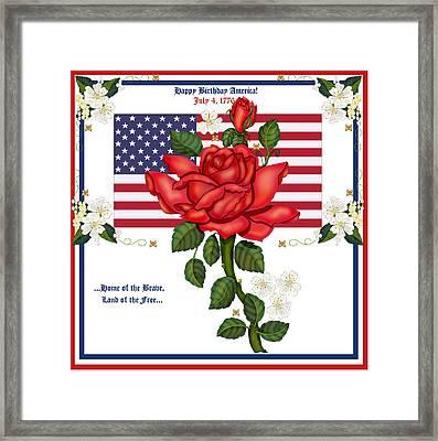 Happy Birthday America Framed Print by Anne Norskog
