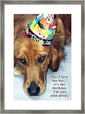 Happy Birthday Buddy  Framed Print by Lorraine Devon Wilke