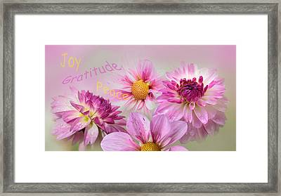 Happy Dahlias Framed Print by Angie Vogel