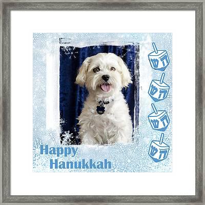 Happy Hanukkah Maltipoo Framed Print by Harold Bonacquist