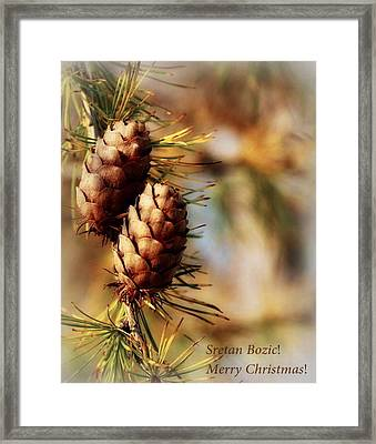 Happy Holidays Framed Print by Marija Djedovic