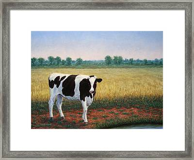 Happy Holstein Framed Print by James W Johnson