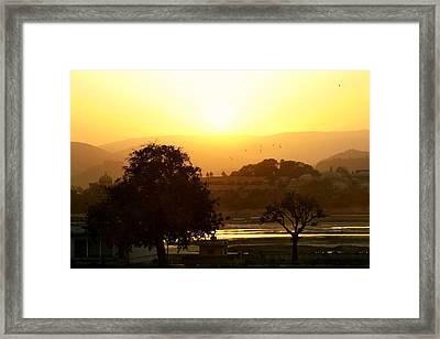 Happy Hour Framed Print by A Rey