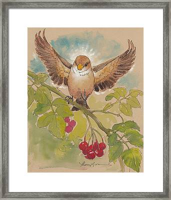 Happy Sparrow Number Four Framed Print by Tracie Thompson