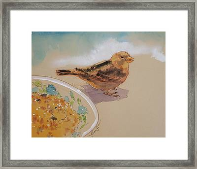 Happy Sparrow Two Framed Print by Tracie Thompson