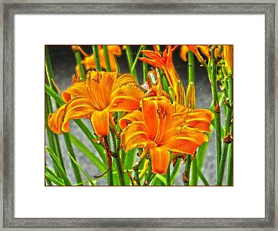 Happy Spring Framed Print by Sonali Gangane
