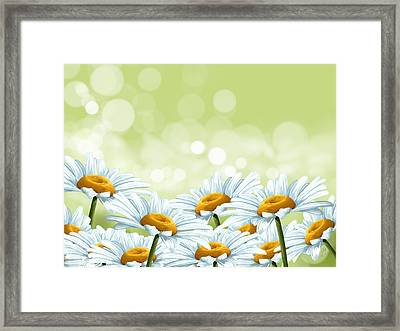 Happy Spring Framed Print by Veronica Minozzi