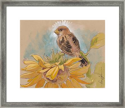 Happy Sunflower Sparrow Framed Print by Tracie Thompson