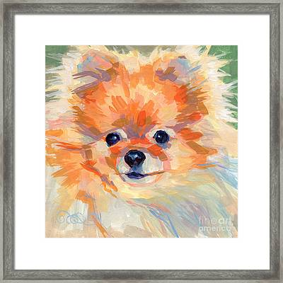 Hardley A Hadley Framed Print by Kimberly Santini