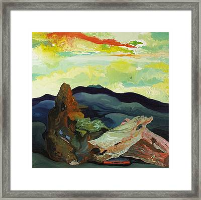 Harmonica Under Firewood Framed Print by Joseph Demaree