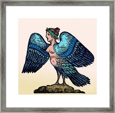 Harpy, Legendary Creature Framed Print by Photo Researchers