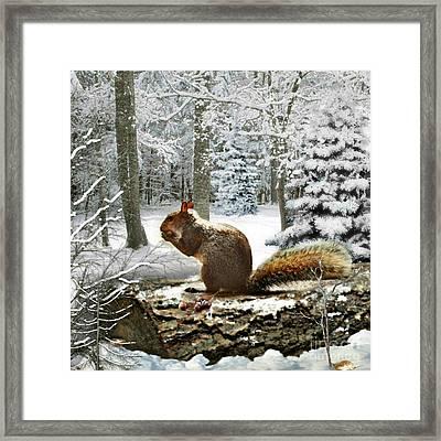 Harry In Winter 2 Framed Print by Morag Bates