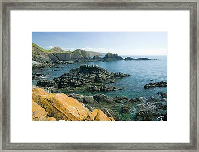 Hartland Quay On The Devon Coast Framed Print by Ashley Cooper