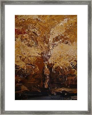 Harvest Framed Print by Holly Picano
