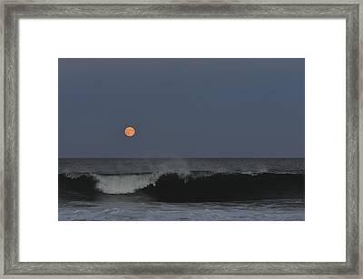 Harvest Moon Seaside Park Nj Framed Print by Terry DeLuco