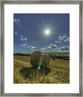 Harvest Sun Framed Print by David Attenborough