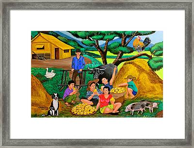 Harvest Time Framed Print by Cyril Maza