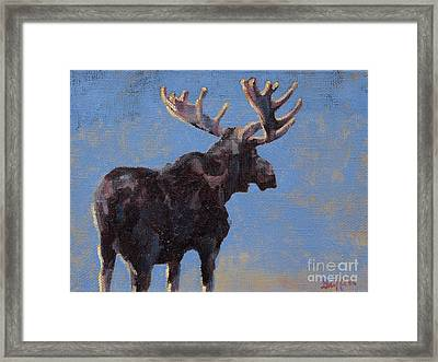 Harvey Framed Print by Patricia A Griffin