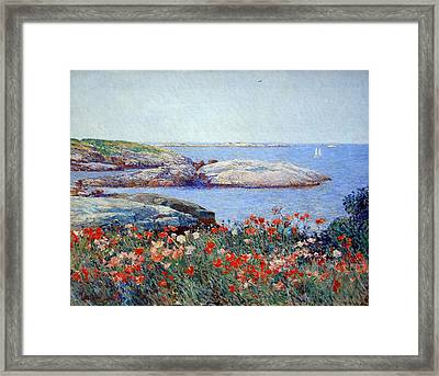 Hassam's Poppies On The Isles Of Shoals Framed Print by Cora Wandel
