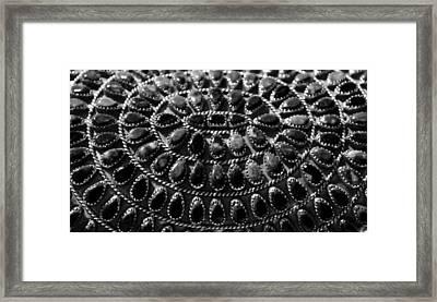 Hatching Night Bw Framed Print by Elizabeth Sullivan