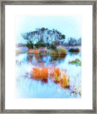 Hatteras Wetlands On The Outer Banks Framed Print by Dan Carmichael