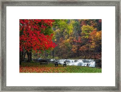 Have A Seat Framed Print by Mark Papke