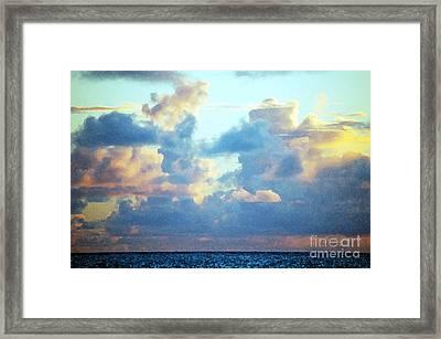 Hawaiian Fluff Framed Print by Flamingo Graphix John Ellis