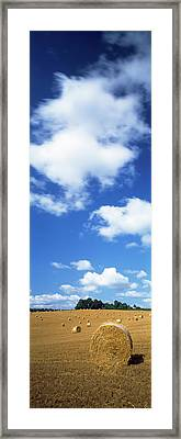 Hay Bales In A Field, Cotswold Framed Print by Panoramic Images