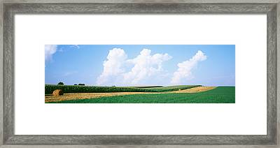 Hay Bales In A Field, Jo Daviess Framed Print by Panoramic Images